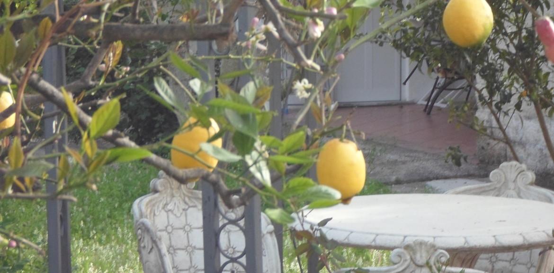 offerte settembre Ischia monolocali vacanze offerte Residence Limoneto